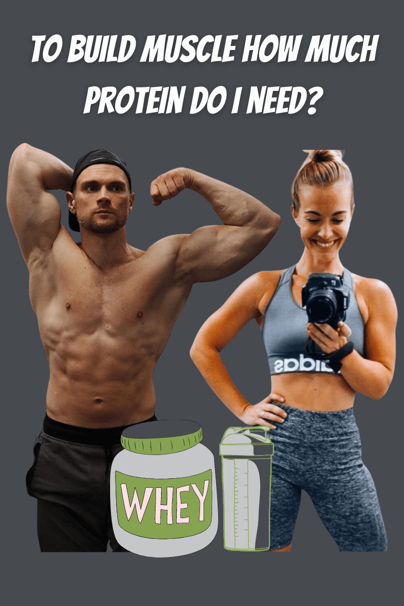 build muscle how much protein